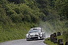 WRC Volkswagen still working on privateer Polo plan for 2017
