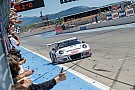 Endurance 24H Circuit Paul Ricard: Precote Herberth Motorsport Porsche celebrates second consecutive victory