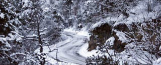 Loeb inherits lead at Monte Carlo