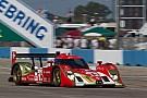 Rebellion Racing announce Petit Le Mans drivers