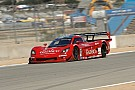 Perspective from ground level on Daytona Prototypes at Laguna Seca