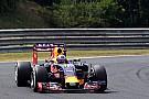 Adrian Newey festeja lo realizado por Red Bull