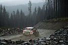 Loeb's team legt Folb vast voor debuutseizoen in rallysport