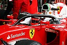 """F1选择""""光环""""作为2017年驾驶舱保护装置"""