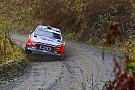 WRC WRC 2017: Mehr Punkte für die Powerstage