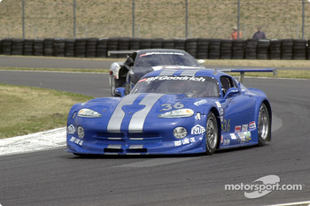 Tommy Archer drives the number 36 Cinjo Racing Dodge Viper to victory at Portland