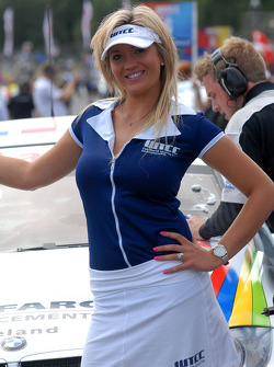 Colin Turkington's grid girl