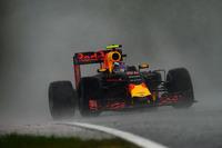 Formule 1 Foto's - Max Verstappen, Red Bull Racing RB12