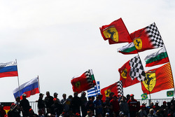 Race fans and flags