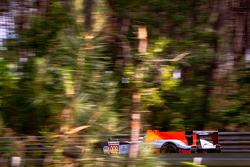 #009 Aston Martin Racing Aston Martin AMR-One: Harold Primat, Adrian Fernandez, Andy Meyrick
