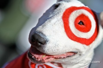 Bullseye, the Target dog