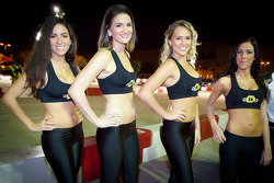 Lovely trophy girls