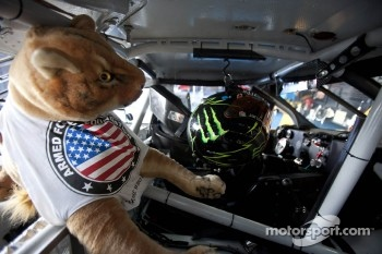 A stuffed cougar in Kurt Busch's car