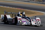 #5 Muscle Milk Pickett Racing Oreca FLM09: Mike Guasch, Memo Gidley