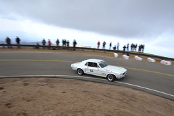 #64 Ford Mustang: James Hodgson