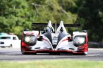 #6 Muscle Milk Pickett Racing HPD ARX-03a: Lucas Luhr, Klaus Graf