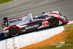 #6 Muscle Milk Pickett Racing HPD ARX-03a Honda: Lucas Luhr, Klaus Graf, Romain Dumas