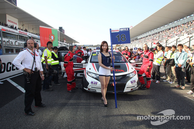 The Grid girl of Tiago Monteiro, Honda Civic Super
