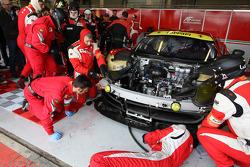 Krohn Racing Ferrari F458 Italia: Tracy Krohn, Nic Johnsson, Maurizio Mediani