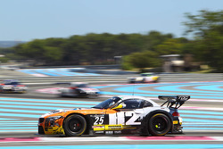 #25 TDS Racing: Henry Hassid, Ludovic Badey, BMW Z4