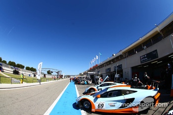 #69 Gulf Racing: Adam Carroll, Nico Verdonck, Rob Bell, McLaren MP4-12C
