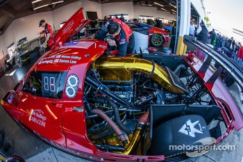 #99 GAINSCO / Bob Stallings Racing Corvette DP Chevrolet