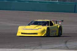 TRANSAM: #87 3Dimensional.com Chevrolet Corvette: Doug Peterson
