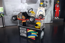Senna Museum Go Kart