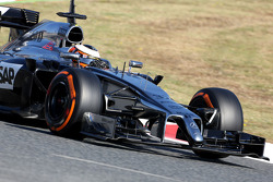 Stoffel Vandoorne, third driver, McLaren F1 Team