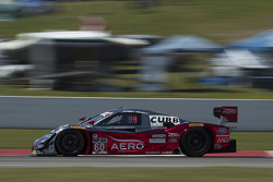 #60 Michael Shank Racing with Curb/Agajanian Ford EcoBoost/Riley: Oswaldo Negri, John Pew