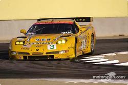 #3 Corvette Racing Corvette C5-R: Ron Fellows, Johnny O'Connell
