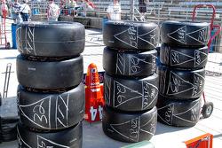 Mene, mene, tekel...Firehawk!  The handwriting is on the tire wall