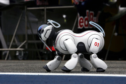 The Sony Aibo robot dog