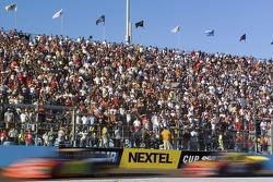 Phoenix fans watch late race action
