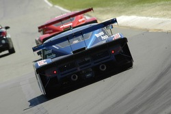 Tail from turn 6