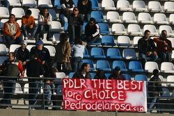 Pedro de la Rosa, Test Driver, McLaren Mercedes fans