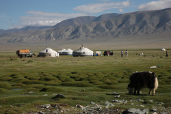 Camp in Mankhan