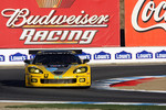 #4 Corvette Racing Chevrolet Corvette C6R: Olivier Beretta, Oliver Gavin