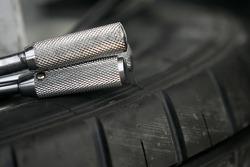 V8 detail