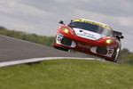 #95 Pecom Racing Ferrari 430 GT2: Luis Perez Companc, Matias Russo