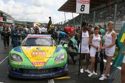 #8 Sangari Team Brazil Corvette Z06