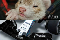 Lotus pokes fun at Williams new aero design