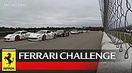 Ferrari Challenge North America - NOLA Motorsport Park 2015: Race 1