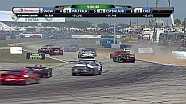 2014 United SportsCar Championship 12 Hours of Sebring Malucelli and others
