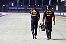 Ricciardo: Verstappen, un équipier