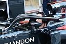 Jenson Button testet Halo-Cockpitschutz für McLaren in Monza