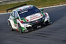 WTCC Marrakesh WTCC: Michelisz leads Honda 1-2 in practice