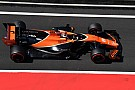 Formel 1 Formel 1 2018: Stoffel Vandoorne bleibt bei McLaren