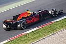Fórmula 1 Balanço de meio de ano da F1: início modesto da Red Bull