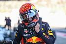 Ферстаппен продовжив контракт із Red Bull до 2020-го